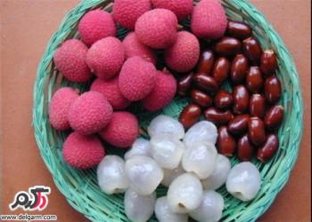 خواص و فواید میوه لیچی