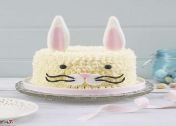 تزیین کیک تولد، مدل های مختلف تزیین کیک های زیبا