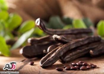 موارد مصرف و فواید دارویی و درمانی معجزه آسای گیاه خرنوب
