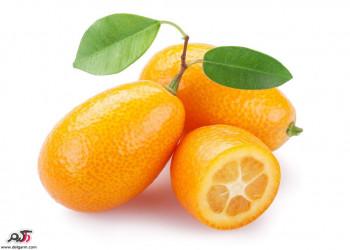 خواص جالب میوه کامکوات (پرتقال های مینیاتوری)