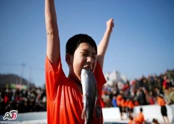 رقابت برای شکار ماهی در رودخانه یخ + عکس