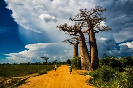 روایت تصویری از چهارمین جزیره ی زیبای دنیا , جزیره ماداگاسکار