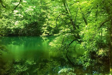 دریاچه فراخین؛ قطعهای جامانده از بهشت