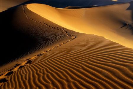 کویر مرنجاب؛ سفری به پهنای شن و ماسه