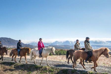 اسب درمانی و 9 مزیت طلایی سوار کاری