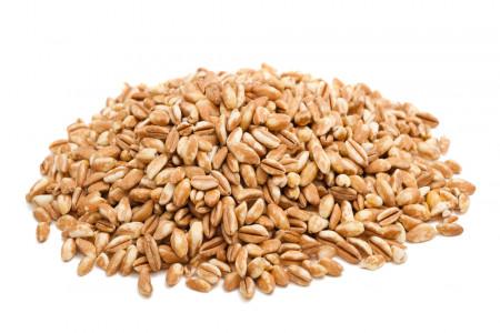 11 خاصیت شگفت انگیز آرد گندم آلمانی برای سلامتی