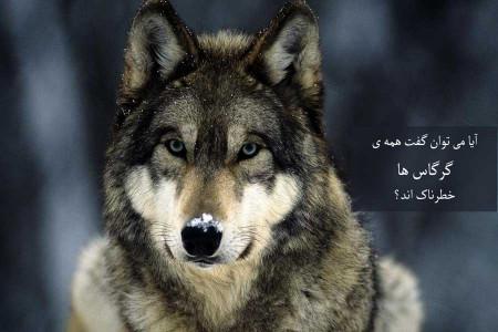 آیا همه ی گرگاس ها آدم خوارند؟