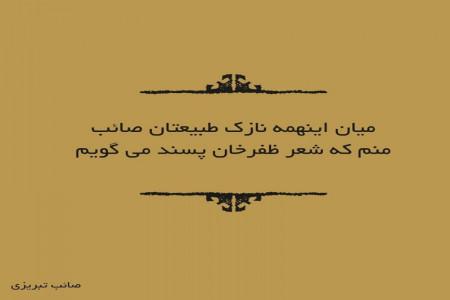 17 شعر گلچین شده از اشعار صائب تبریزی