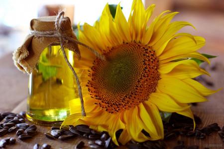 11 خاصیت حیرت انگیز روغن آفتابگردان برای سلامتی