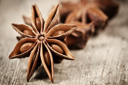 گیاه دارویی بادیان رومی (انیسون) معجزه طب سنتی است!