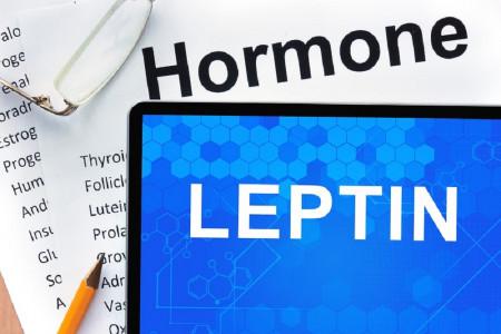 8 روش برای کنترل سطح هورمون لپتین جهت کاهش وزن