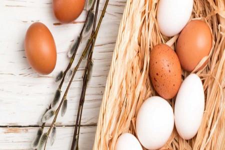 تخم مرغ قهوه ای سالم تر از تخم مرغ سفید است؟!