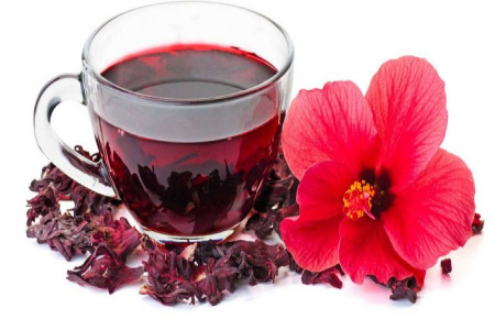 روش کاشت گیاه چای ترش و نحوه برداشت آن