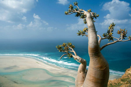 آشنایی با کشور یمن و جاذبه های گردشگری آن