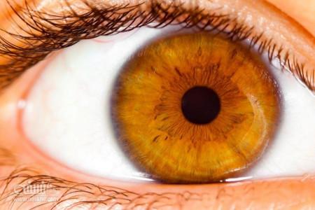 جداشدگی و پارگی شبکیه چشم در اثر ضربه چگونه درمان میشود ؟