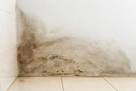 رفع نم و رطوبت خانه بدون تخریب در محل و فوری
