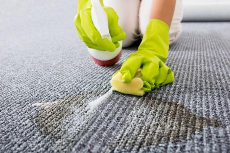 درصورت ریختن استفراغ روی فرش چه باید کرد؟