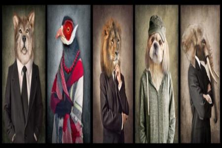 3 تست روانشناسی حیوان درون: حیوان درون شما چیست ؟