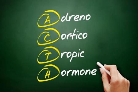 هورمون آدرنوکورتیکوتروپین یا ACTH چیست ؟