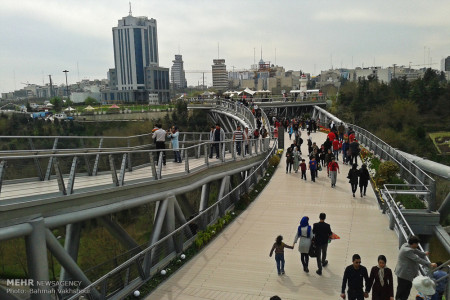 تصاویر پل طبیعت تهران