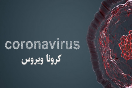 ویروس کرونا: همه آنچه که باید از کرونا بدانید !