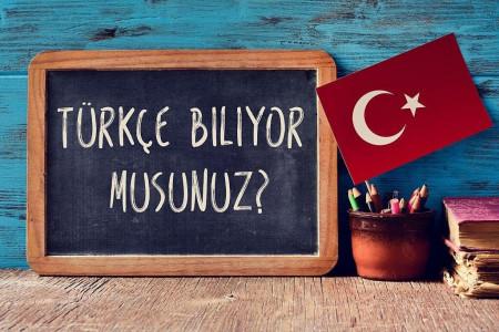 اهمیت یادگیری زبان ترکی استانبولی برای زندگی در ترکیه