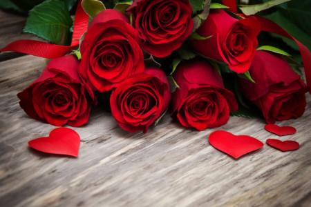 آشنایی با 13 رنگ مختلف گل رز