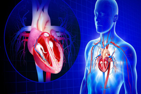 راههای جلوگیری از نارسایی قلبی در اثر حمله قلبی