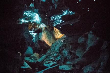 خیره کننده ترین غار جهان، غار کرم های شب تاب وایتومو