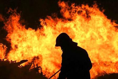 تصاویر و جزئیات آتش سوزی شدید کارخانه لنج بوشهر