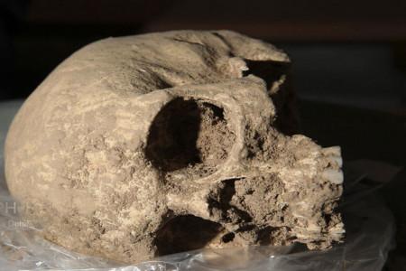 تصاویری جالب از 13 اسکلت انسانی تازه کشف شده در تخت جمشید
