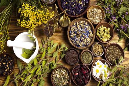 10 گیاه دارویی برای تقویت سیستم ایمنی بدن