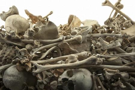 تعبیر خواب استخوان : 29 نشانه و تعبیر دیدن استخوان در خواب