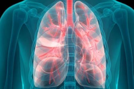 پزشکان فوق تخصص ریه در سنندج به همراه آدرس و تلفن