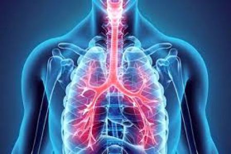 لیست پزشکان فوق تخصص ریه در یزد به همراه آدرس و تلفن