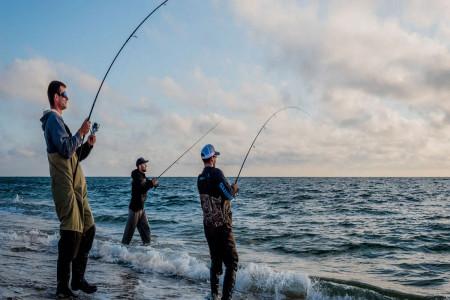 روز جهانی ماهیگیری در سال 99 چه روزی است ؟