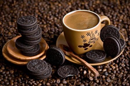 آشنایی با نمونه های پر فروش و پر طرفدار بیسکویت قهوه
