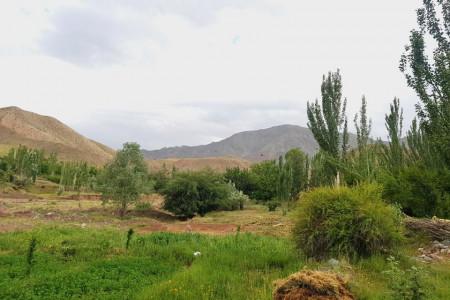 معرفی شهرستان تربت حیدریه و جاذبه های گردشگری آن