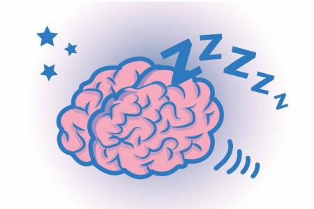 هنگامی که خواب هستیم مغزمان چکار می کند ؟