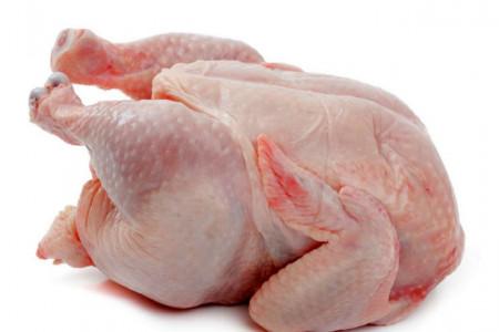 مرغ را گران نخرید