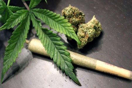 ماریجوانا و حشیش از فهرست مواد مخدر خارج شد