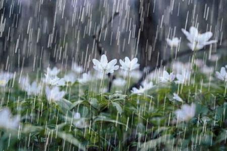 شدت بارندگی ها برای روز شنبه!