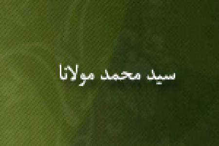 رحلت علامه سيدمحمد مولانا عالم و مؤلف(1363 ق)