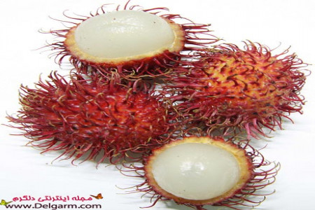 خواص میوه رامبوتان و خاصیت های عجیب رامبوتان