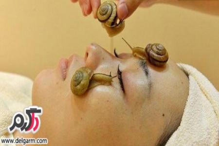 درمان چین و چروک صورت با حلزون