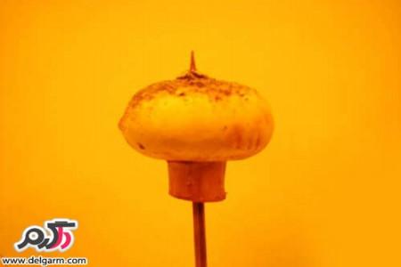 روش تهیه قارچ خوش خوراک گیاهی در پنج دقیقه ای