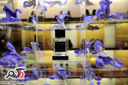 راهنمای انتخاب عطر با یک حس خوب و دلپذیر