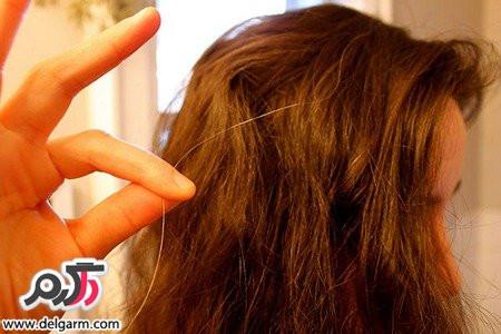 میوه های ضد دلیل سفید شدن مو
