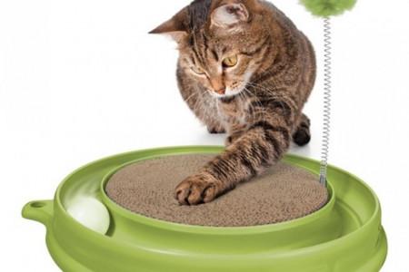 اسباب بازی های مناسب گربه