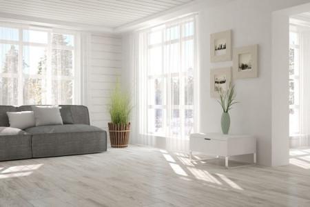 ۶ سوپر گیاه که هوای خانه شما را تصفیه میکند
